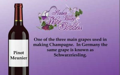 Wine Word Wednesday: Pinot Meunier