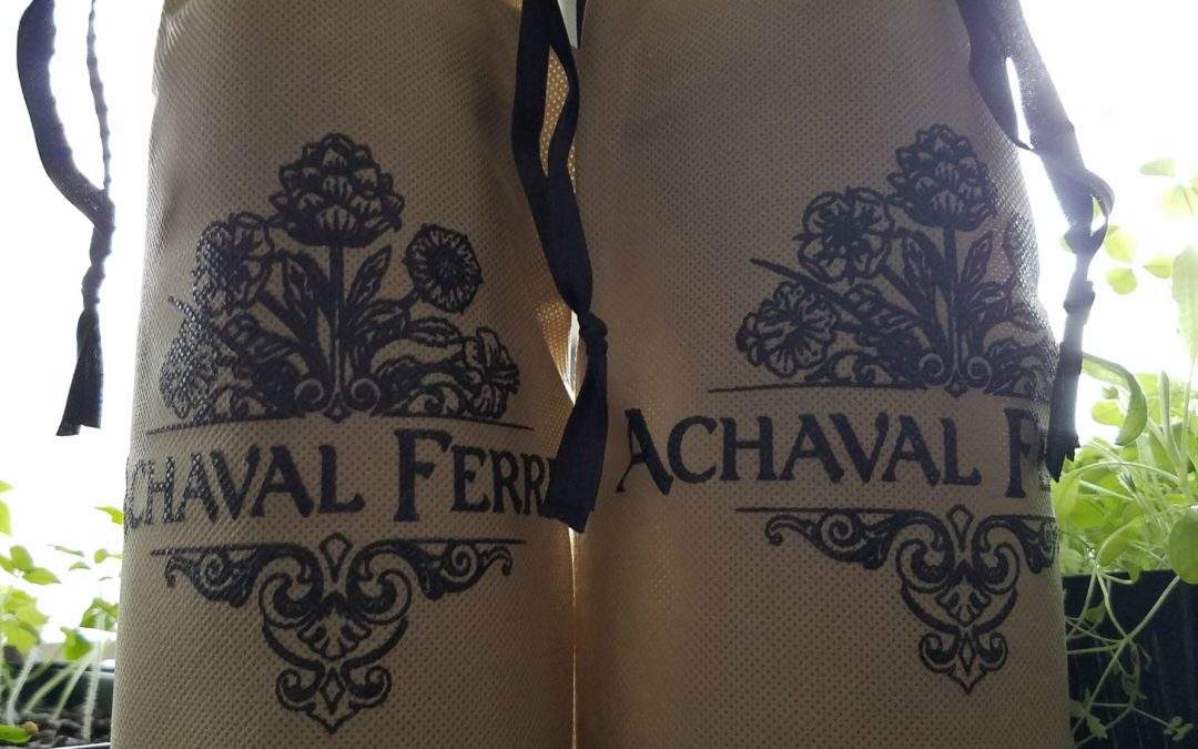 Blind Wine Tasting with Achaval-Ferrer
