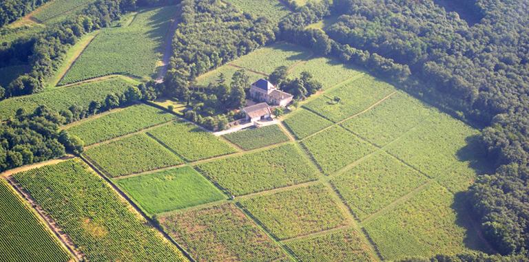 Burgundy Bound