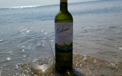 Argentina Wines of Distinction – Bodega Colomé