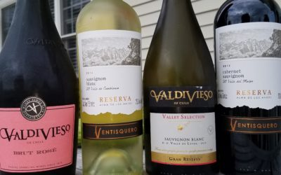 3 Ways to Enjoy Wines of Chile