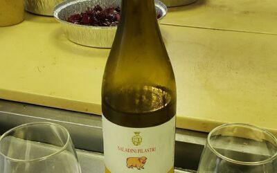 Kitchen Wine: Pecorino
